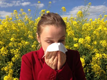 How An Air Ionizer Helps Remove All Types Of Allergies