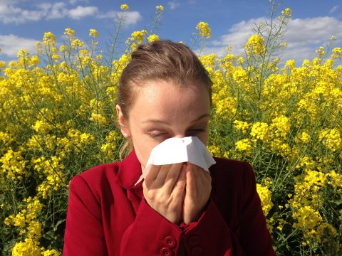 girl sneezing because of allergie and pollen, hay fever