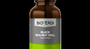 black walnut hulls herbal tincture